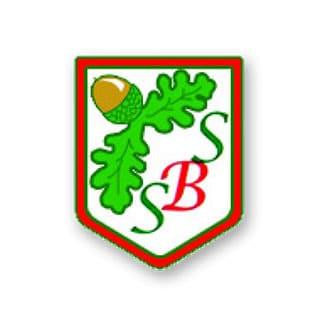 South Baddesley School logo