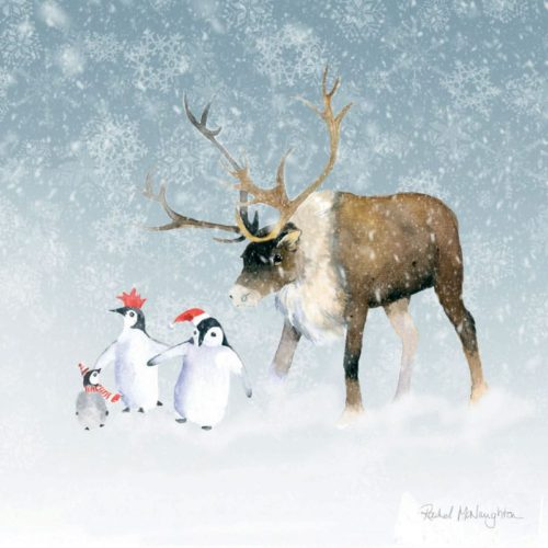 Reindeer and penguin family Oakhaven Hospice Christmas Card